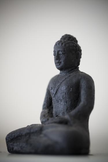 Energie Praktijk boeddah